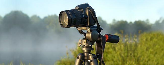 Use a tripod to get sharp photos in natural light